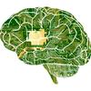 Cluster: Brain-Computer Interface