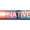 Native Exploration Holdings