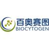 Beijing Biocytogen Co., Ltd.