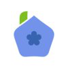 Blueberry (company)