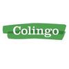 Colingo