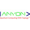 Anyon Systems