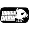 WhiteCrow Tech