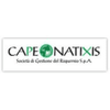 CAPE Natixis