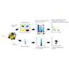 Single-Cell RNA Sequencing