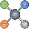 Carbon Utilization