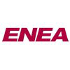 ENEA Software & Services
