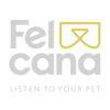 Felcana (web development company)