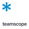 Teamscope.io